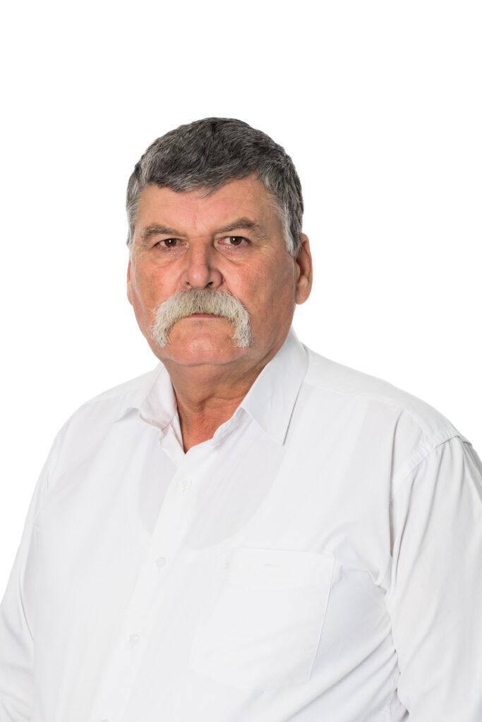 Ionel MOGLAN